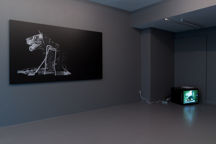 'Installation view', ett konstverk av Revital Cohen & Tuur Van Balen