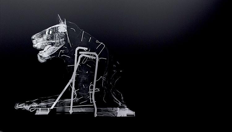 'Savane Du L'est', 2016, ett konstverk av Revital Cohen & Tuur Van Balen