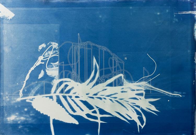 'Savane Du Sud (Demi-Pointe)', 2017, ett konstverk av Revital Cohen & Tuur Van Balen
