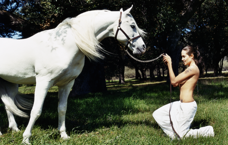 'Angelina Jolie: White Horse in Meadow', 2001, ett konstverk av  David LaChapelle