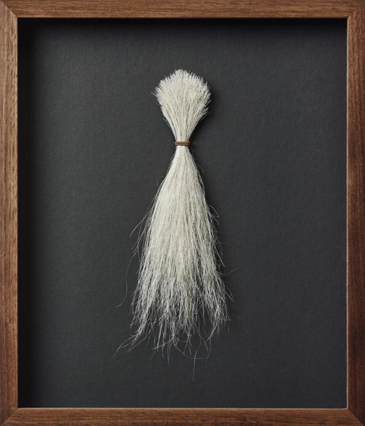 'Titus', 2017, ett konstverk av Pernilla Zetterman