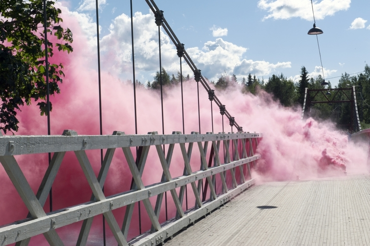 'Forza rosa fluff', 2015, ett konstverk av Klas Eriksson