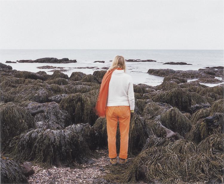 'Large de vue', ett konstverk av Elina Brotherus