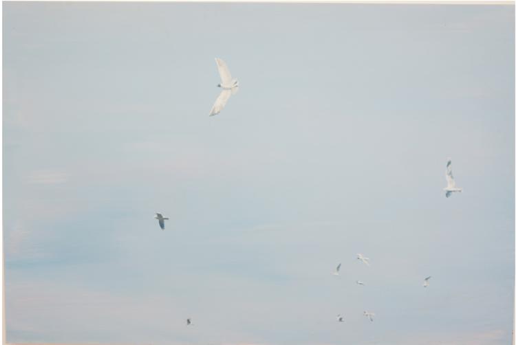 'Birds ', 2017, ett konstverk av Gustaf von Arbin