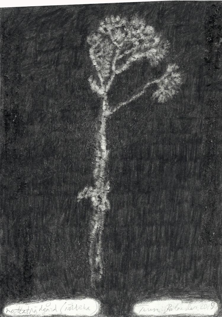 'Nattaträdgård (rölleka)', 2019, ett konstverk av Terese Bolander