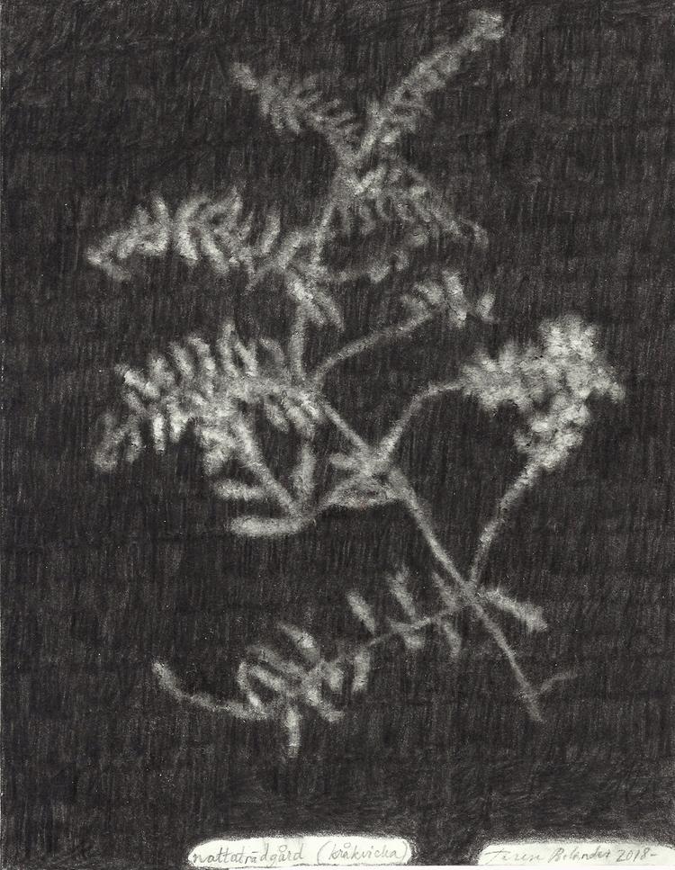 'Nattaträdgård (kråkvicka)', 2018, ett konstverk av Terese Bolander