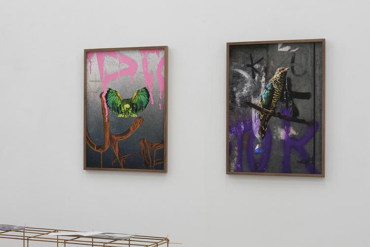 'Amazona Aestiva, Odd Fellowvägen, Stockholm', 2020, ett konstverk av Erik Berglin