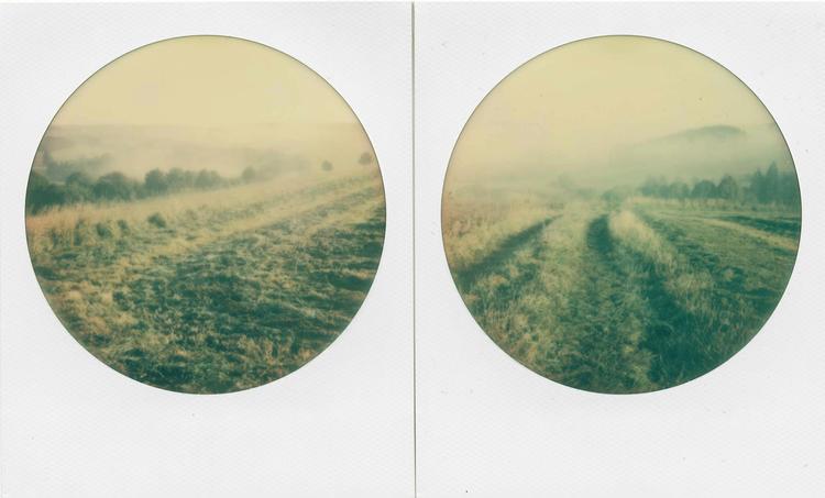 'Last Beauty before the End of Humankind II - pair one', 2017, ett konstverk av Magda Delgado