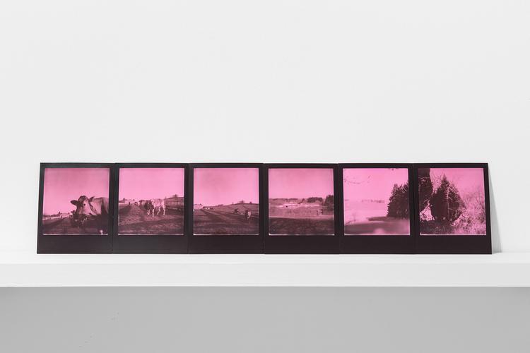 'Of Nature's distancing from Man', 2019, ett konstverk av Magda Delgado
