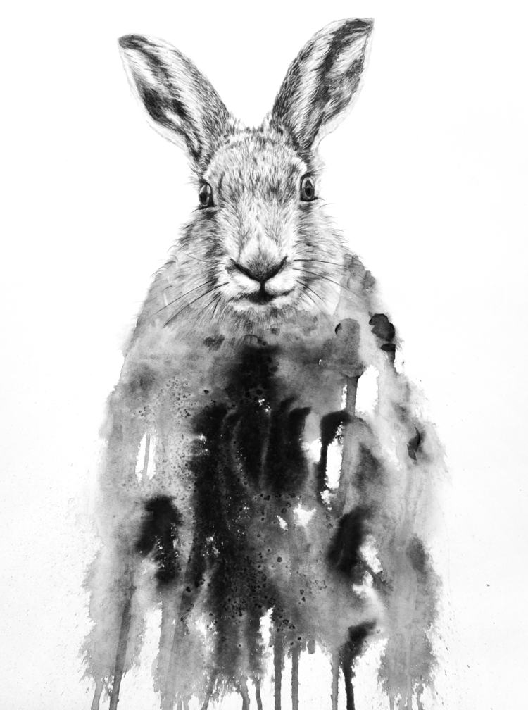'Hare', 2019, ett konstverk av Annika Wessmark