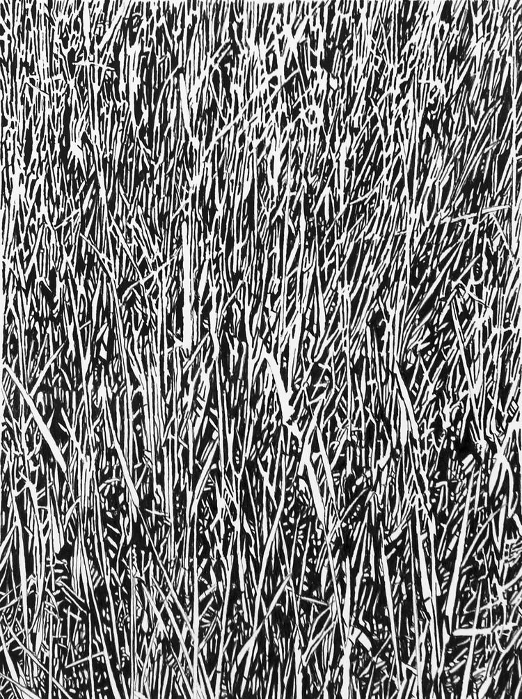 'Gräs nr 2', 2018, ett konstverk av Annika Lindfors
