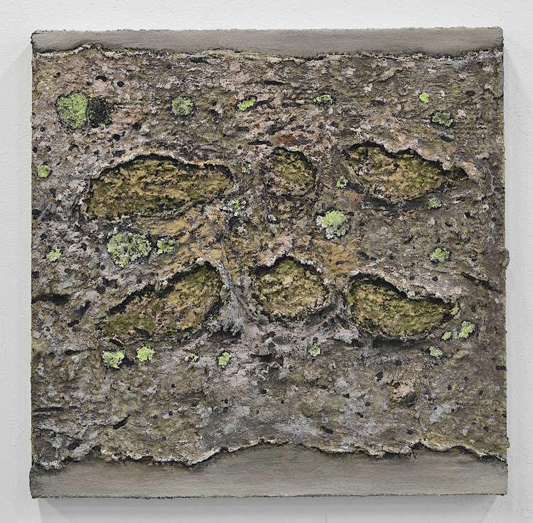 'Utan titel (20191122) Rosa stenyta med limegrön lav', 2019, ett konstverk av Ivar Lövheim