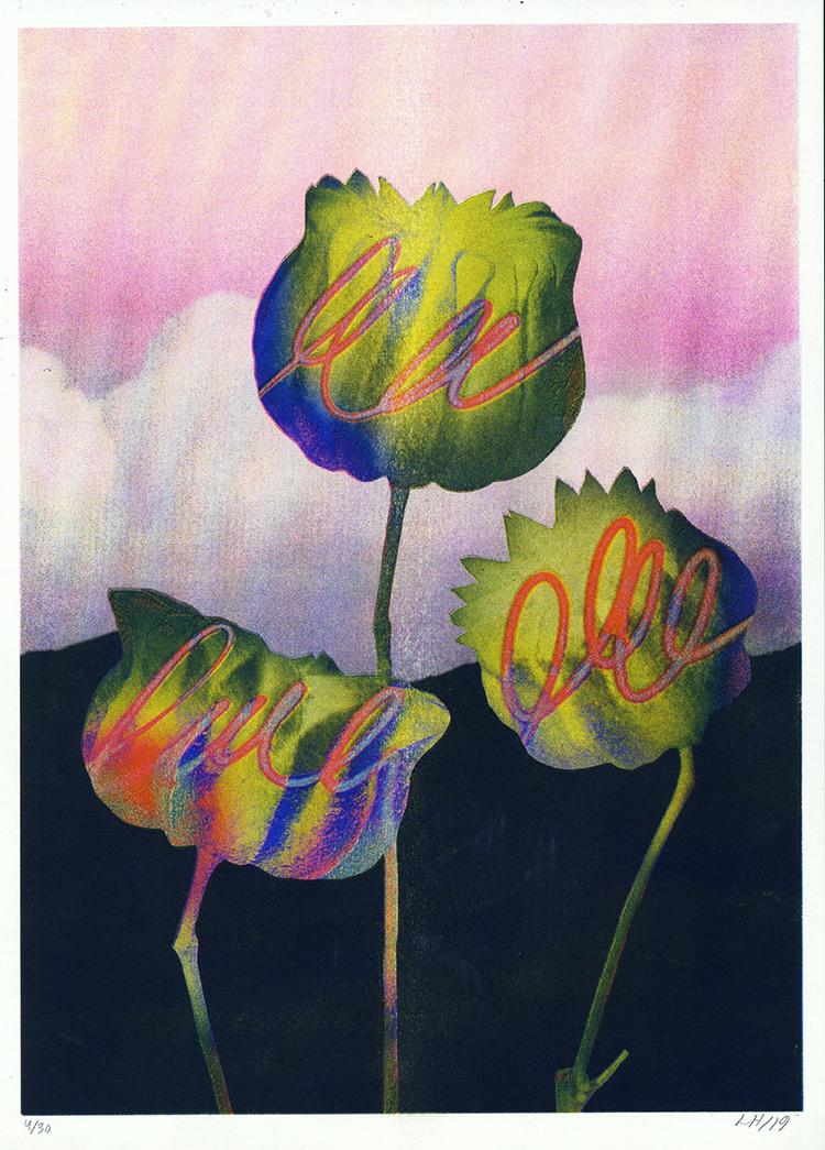 'Dream Plant', 2019, ett konstverk av Linn Henrichson